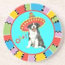 Fiesta Border Colllie Coaster