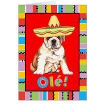 Fiesta Bulldog