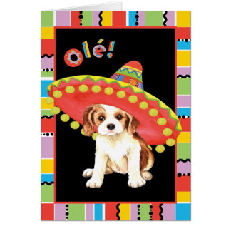 Fiesta Cavalier Greeting Cards