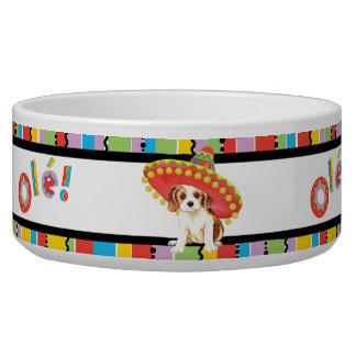 Fiesta Cavalier Pet Water Bowls