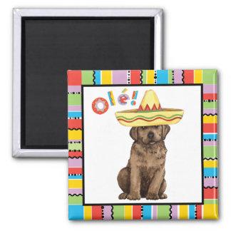 Fiesta Chocolate Lab Magnet
