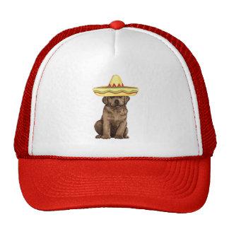 Fiesta Chocolate Lab Trucker Hat