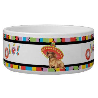 Fiesta Dachshund Bowl