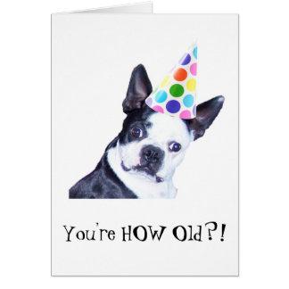 Fiesta de cumpleaños de Boston Terrier - tarjeta