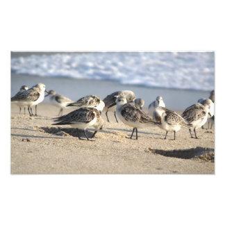 Fiesta de la playa Entrada de Sebastian Impresiones Fotográficas