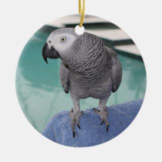 Fiesta en la piscina del gris africano adorno redondo de cerámica