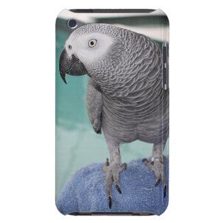 Fiesta en la piscina del gris africano iPod touch Case-Mate fundas