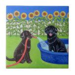 Fiesta en la piscina divertida Labradors Azulejos Ceramicos