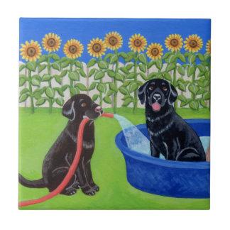 Fiesta en la piscina divertida Labradors Azulejo Cuadrado Pequeño