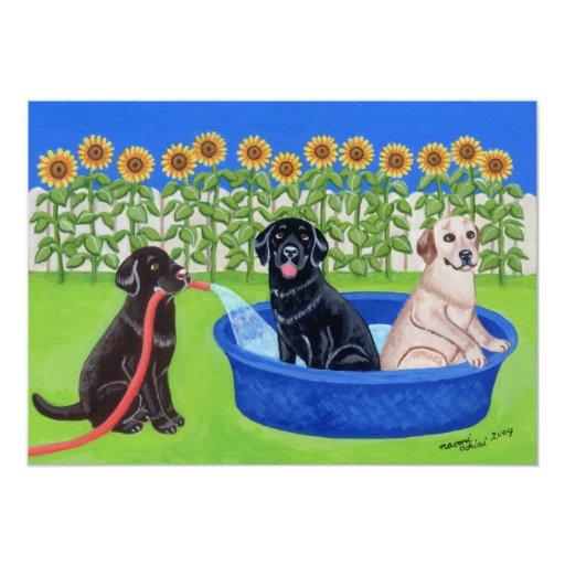 Fiesta en la piscina divertida Labradors Invitación 12,7 X 17,8 Cm