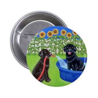 Fiesta en la piscina divertida Labradors Pin Redondo De 2 Pulgadas