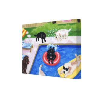Fiesta en la piscina Labradors Lona Estirada Galerias