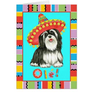 Fiesta Havanese Card
