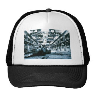 Fiesta Power Trucker Hat