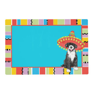 Fiesta PWD Placemat