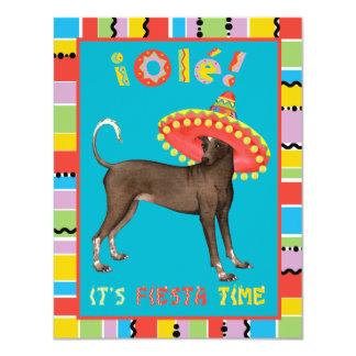Fiesta Xolo Card