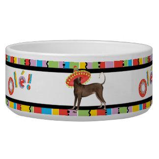 Fiesta Xolo Dog Water Bowls