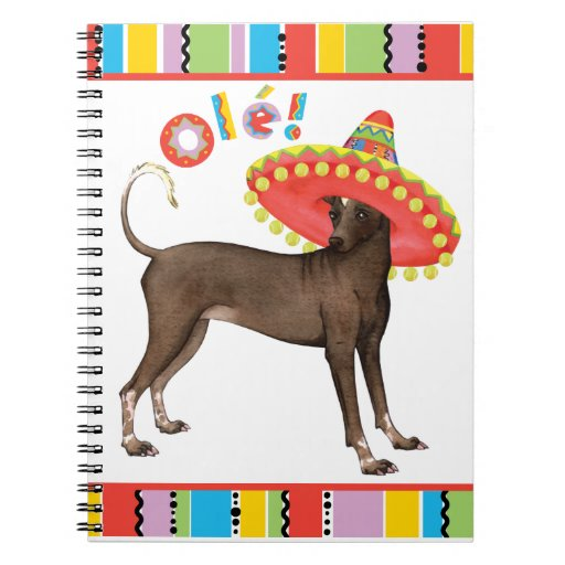 Fiesta Xolo Notebook