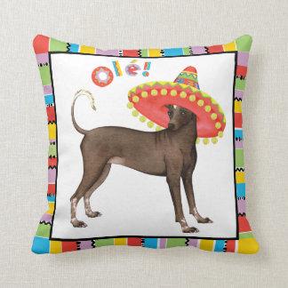 Fiesta Xolo Pillow