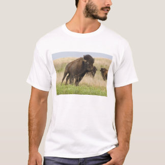 Fiesty young bison bull at the Tallgrass T-Shirt