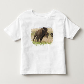 Fiesty young bison bull at the Tallgrass Toddler T-shirt