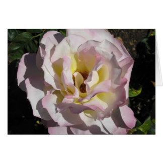 Fifth Rose Chakra Card
