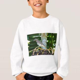 FIG BIRD RURAL QUEENSLAND AUSTRALIA SWEATSHIRT