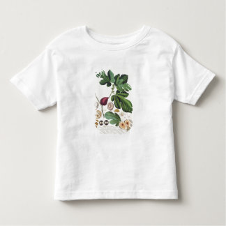 Fig, engraved by Johann Jakob Haid (1704-67) plate Toddler T-shirt