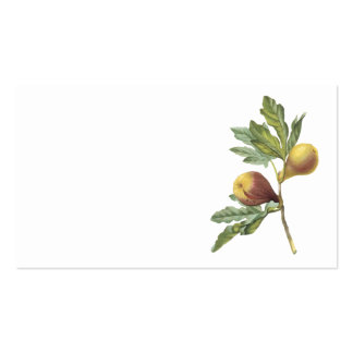 fig(Ficus violacea) by Redouté Double-Sided Standard Business Cards (Pack Of 100)