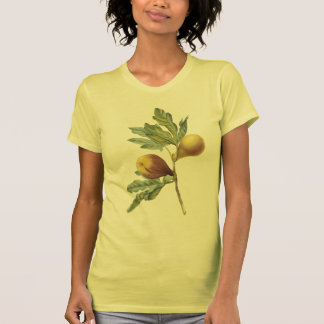 fig(Ficus violacea) by Redouté T Shirt