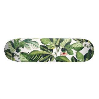 Fig Garden Skateboard