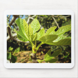 Fig Leaves Mousepads