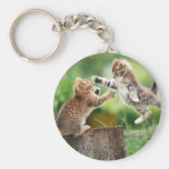 Fight%20Cats Keychains