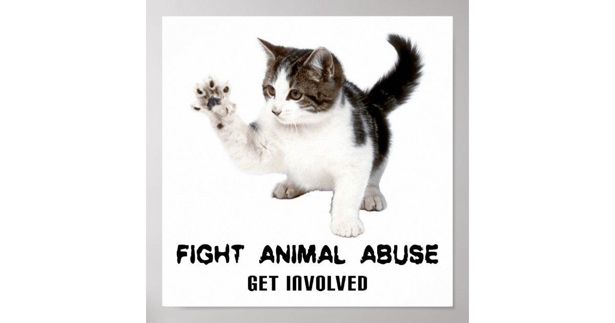 FIGHT ANIMAL ABUSE KITTEN POSTER | Zazzle