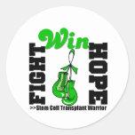 Fight Believe Win Stem Cell Transplant Warrior Stickers