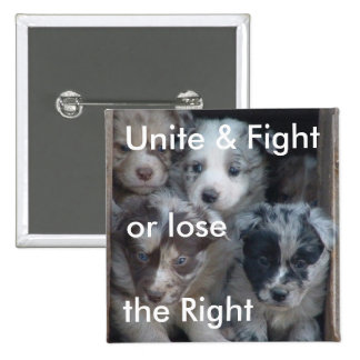 Fight for Right to Raise Dogs 2 Inch Square Button