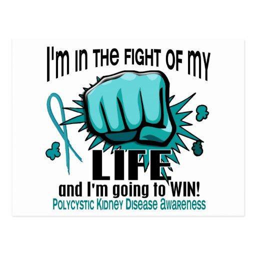 Fight Of My Life 2 PKD Postcard