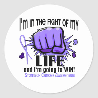 Fight Of My Life 2 Stomach Cancer Stickers