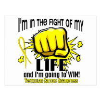 Fight Of My Life 2 Testicular Cancer Postcard