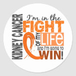 Fight Of My Life Kidney Cancer Sticker