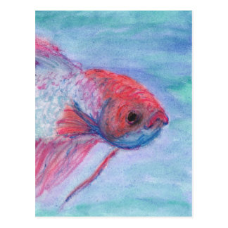 Fighter Fish Postcard