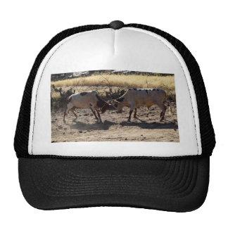 Fighting Bulls Trucker Hat
