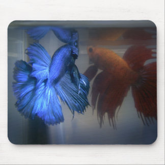 Fighting Fish Mouse Pads