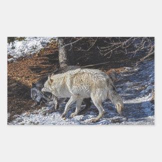 Fighting Grey Wolves Rectangular Sticker