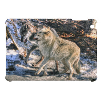 Fighting Grey Wolves Wildlife Photo Art 2 Cover For The iPad Mini