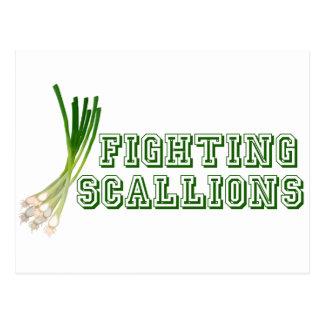 Fighting Scallions - Sabrina Postcard