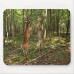Fighting Whitetail Bucks Mousepads