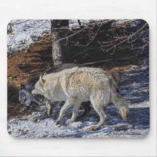 Fighting Wolves Wildlife for Animal-lovers Mouse Pad