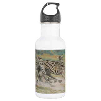 Fighting Zebras Stainless Steel Water Bottle