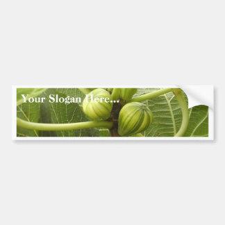 Figs Bumper Sticker